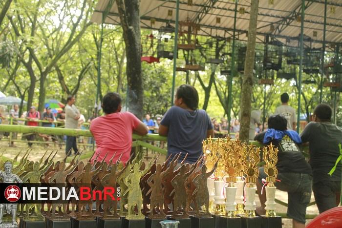 Sapu Raba Action Show dan Dewa Cinta Nyeri
