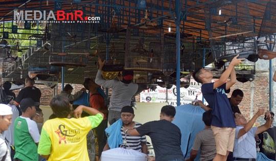 Celebrity Popular, Panglima SF Go To Soeharto Cup