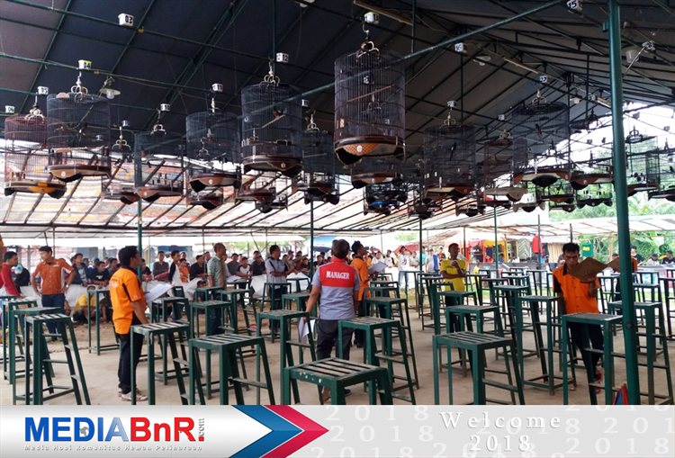 Gledek Boyong 1 Unit Motor, RG.BF Team & Semprul Team Borong Juara