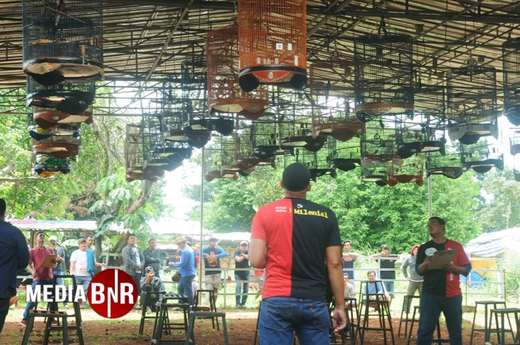 Smart & M J Jawara Murai Batu Di Road To Milenial Cup, Ningrat Dan Mojjo Juara Umum