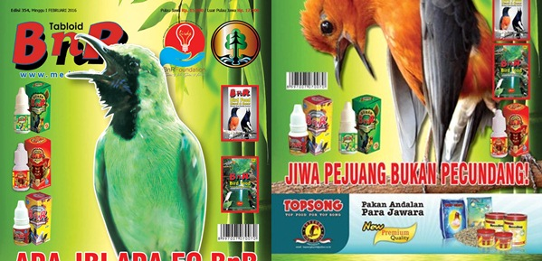 Daftar Agen Tabloid BnR Indonesia