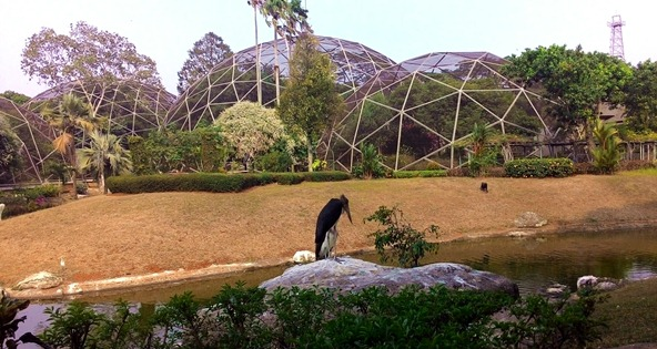 19 Juni Launching Lapangan BnR Taman Mini