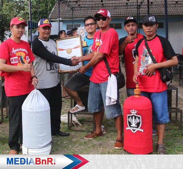 TOBIL CUP YOGYAKARTA : Berakhir Sukses Dengan Kemenangan B90 SF & DT Pyramid Cup Jogja