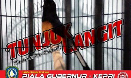 Tunjuk Langit (TL) Raih Double Winner di Gelaran Gubernur Cup Kepri