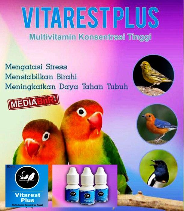 Vitarest Plus hadir Sebagai multivitamin untuk ocehan.
