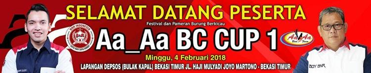 banner aa aa bc cup 1