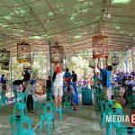 UNMET CUP  : Sebuah Dedikasi Penikmat Kicau Bangka Barat