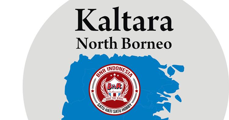 BnR Lebarkan Sayap di Kalimantan Utara