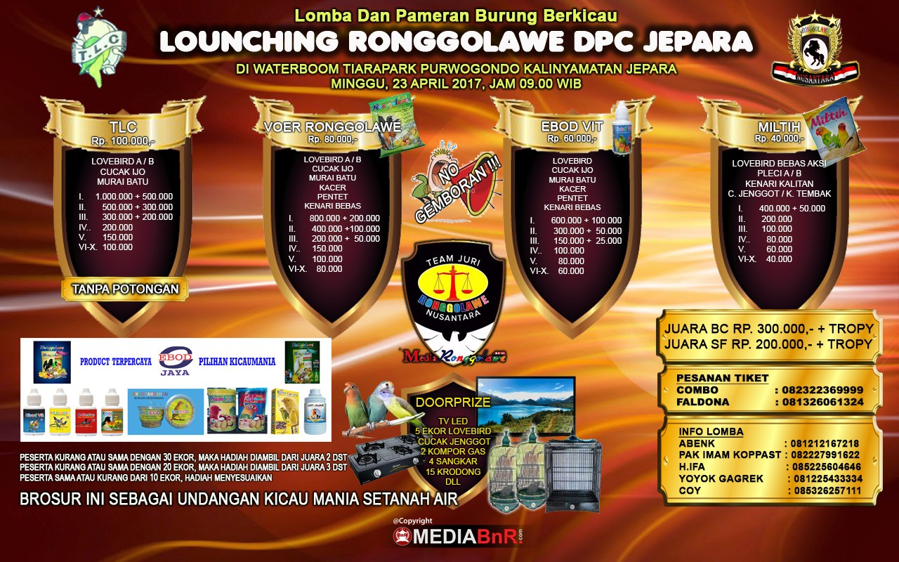 brosur lomba burung kicau launching ronggolawe jepara 23 april 2017