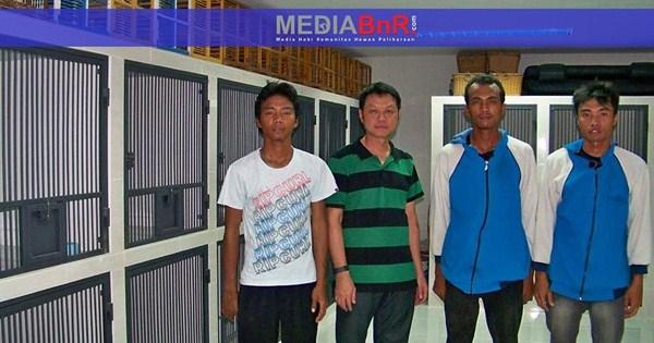 Romeo dan Lenza Angkat Pamor STRP, Ternakan Akiu Argent Dominasi Junior