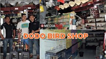 dodo bird shop