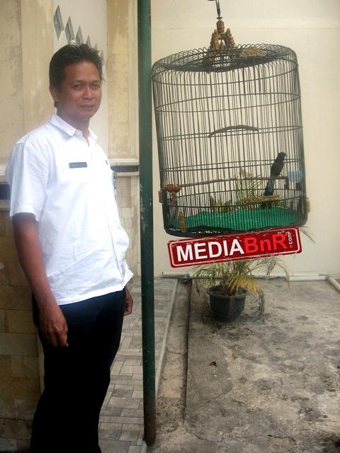 Indukan Super Jadi Acuan Sang Dokter Kembangkan Breeding