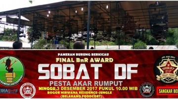 final road to bnr award jungle