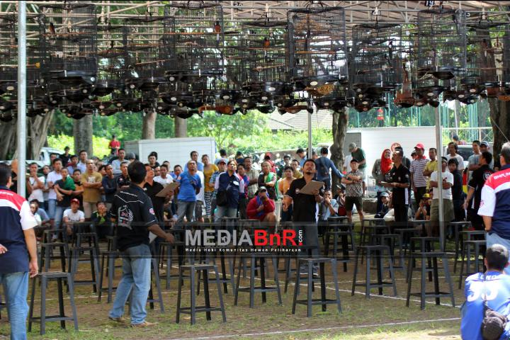 Galeri Launching BnR TMII : Lomba Tertib Tanpa Pagar Pembatas