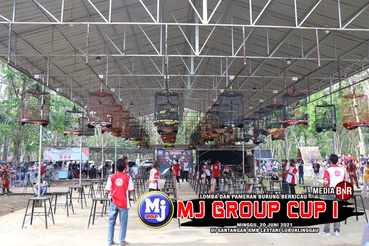 Murai batu Barracuda, Kacer RI dan lovebird Bebek raih juara BOB di MJ Group Cup 1