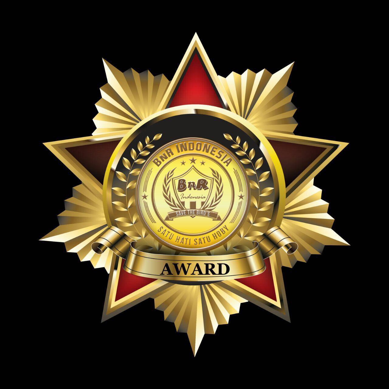 logo bnr award 2017