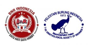 logo bnr dan pbi thumbnail