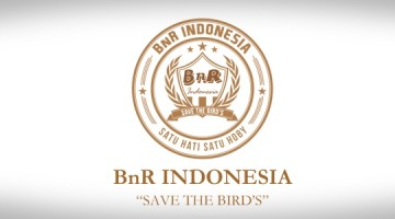 logo bnr indonesia gold