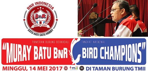 Murai Batu Bird Champion BnR Indonesia 2017