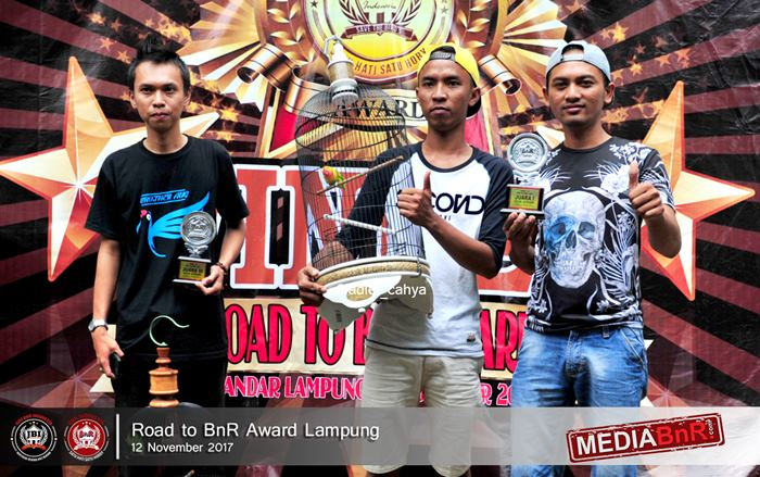 para juara dikelas lovebird BnR Indonesia
