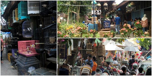 Kios BnR Awal Maret Dibuka di Pasar Pasty Djogja