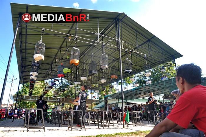 Banjir Konin Mania Nusantara, Black Ghost Unjuk Gigi, Comot Nyeri