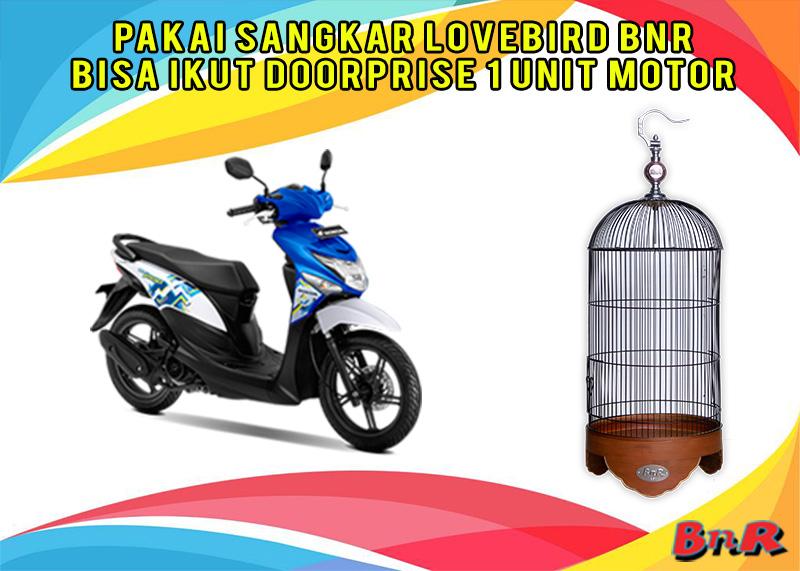 Kandang Love Bird Natural Doorprise Motor di Bandung