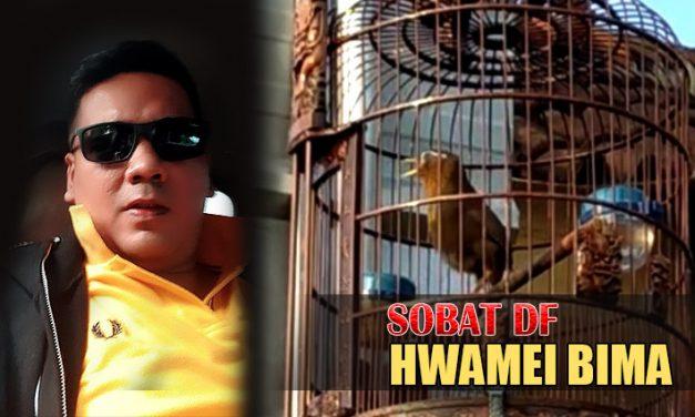 SOBAT DF Take Over Hwamei BIMA Dengan Angka Fantastis
