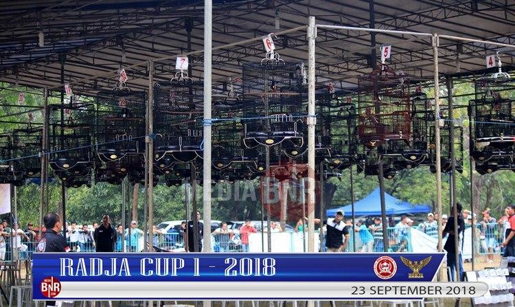 Radja Cup 1 Sajian Bermutu & Berkelas