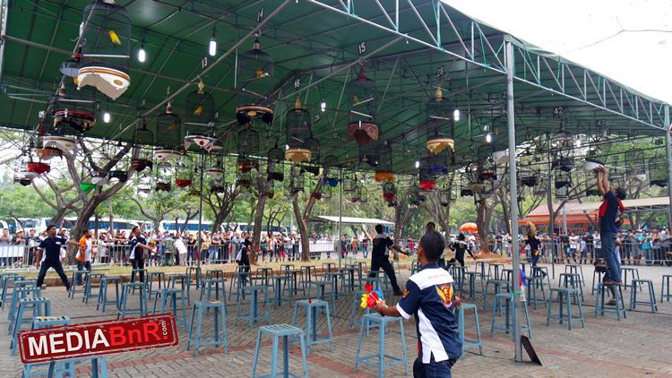 Gelar Singing & Beauty Contest, Lomba KLI Batavia Cup 1 Dibanjiri Lovebird Mania