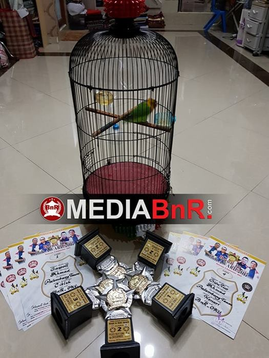 trophy yang diraih Jampang di Road To BnR Award