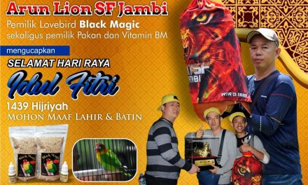 Arun Lion SF – Jambi