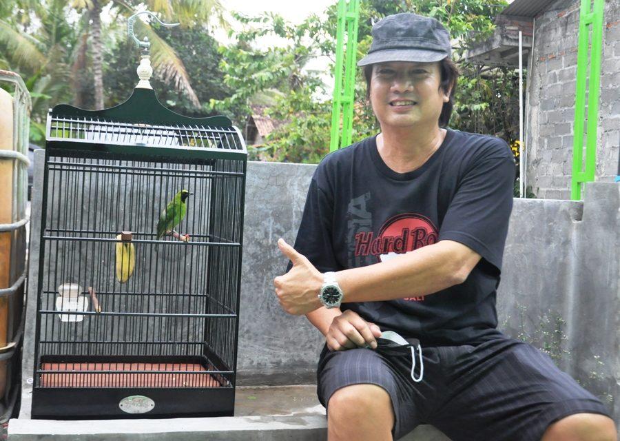 Mr Donk Yogyakarta sukses mengorbitkan Cucak Hijau Senator